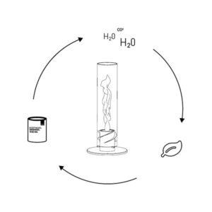 etzaki_bioethanol-lifecycle_2